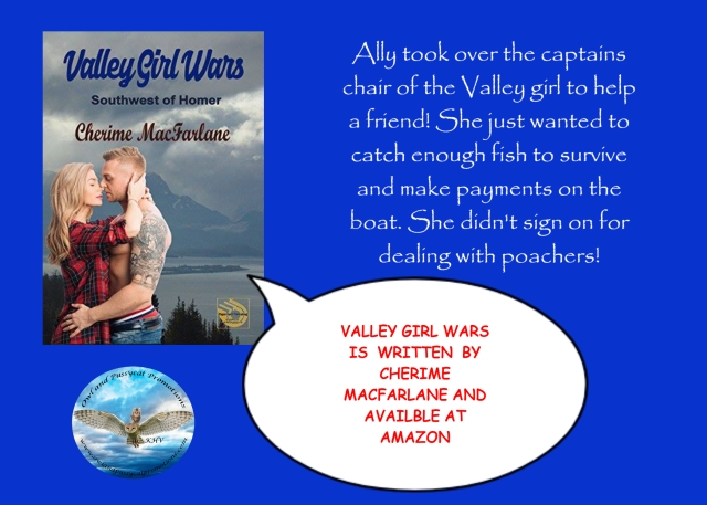 VALLEYGIRL WARS BLURB.jpg